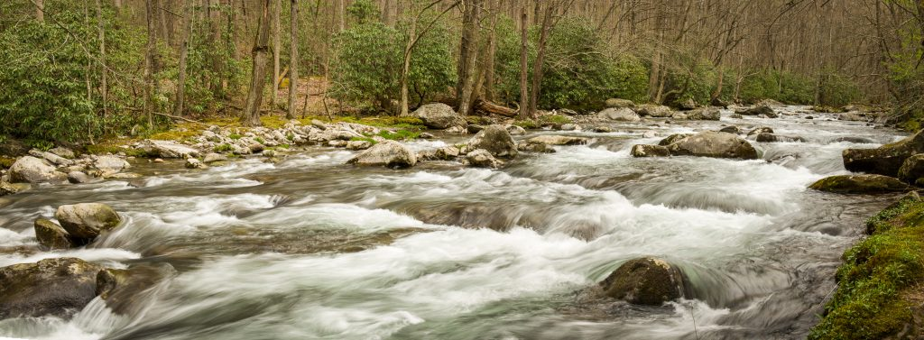 Panoramic Stream GSMNP