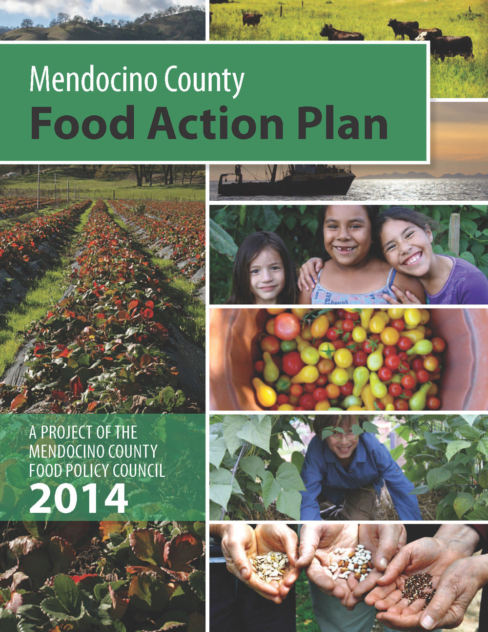 Mendocino County Food Action Plan - The food movement has been an important engine for reinvigorating declining agricultural bases and depressed economies throughout the U.S.. Miles was the lead facilitator of a two-year community engagement process to compile the guiding principles, goals, and actions in the Mendocino County Food Action Plan. KTC helped craft the communications plan for the launch of this living, guiding document for the Mendocino County Food Policy Council and the multiple and diverse stakeholders involved in its formation. This plan continues to drive the process of the regional food movement.
