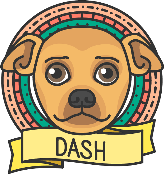Pets_Dash.png