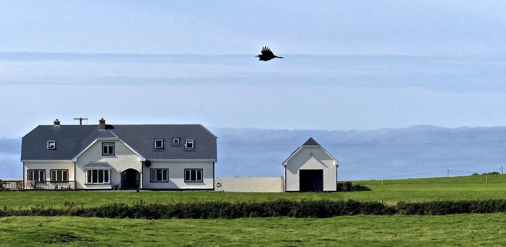 house-on-shore.jpg