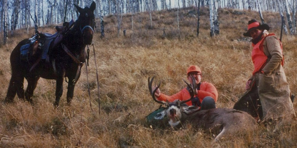 Hunting Trips - Bighorn Sheep • Elk • Mule Deer • Drop camps