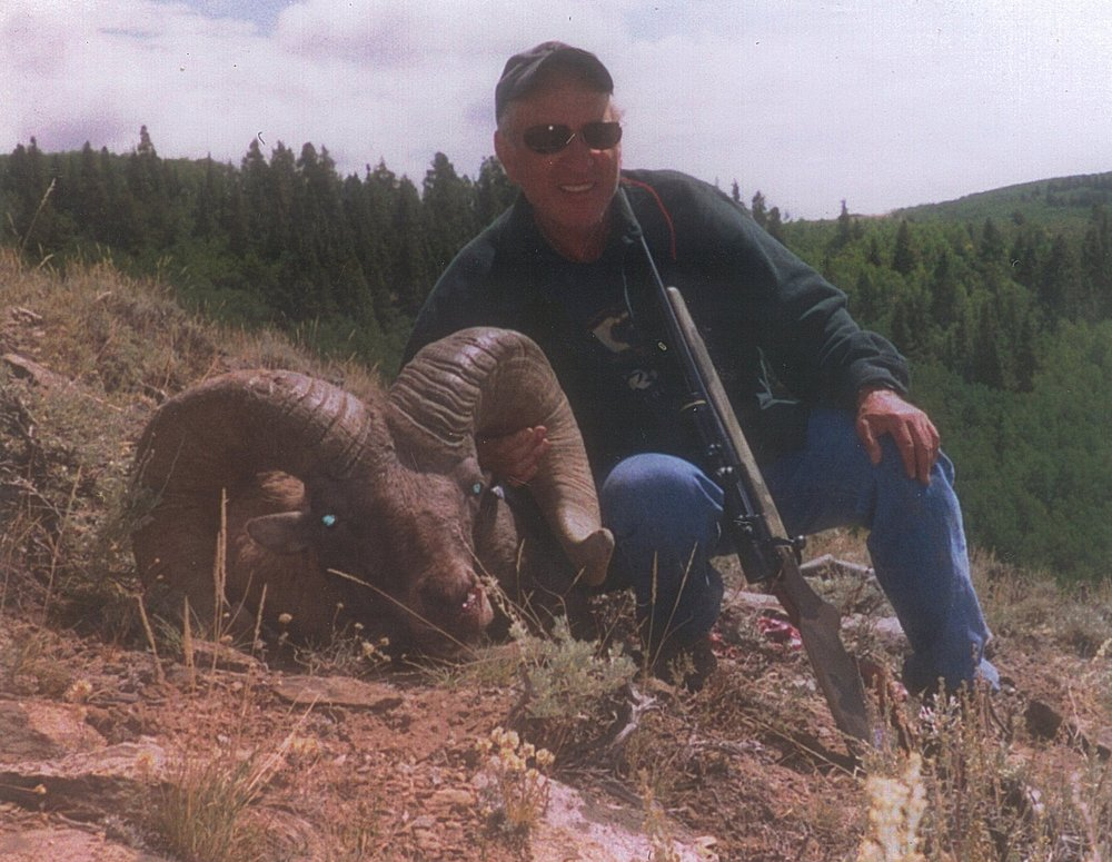 View Our Bighorn Sheep Gallery