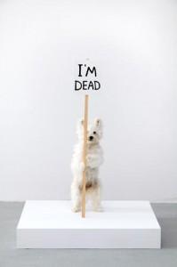 I'm Dead by David Shringle