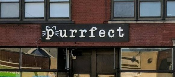 Purrfect Cafe Store Front - Located on Hertel Ave. in Buffalo