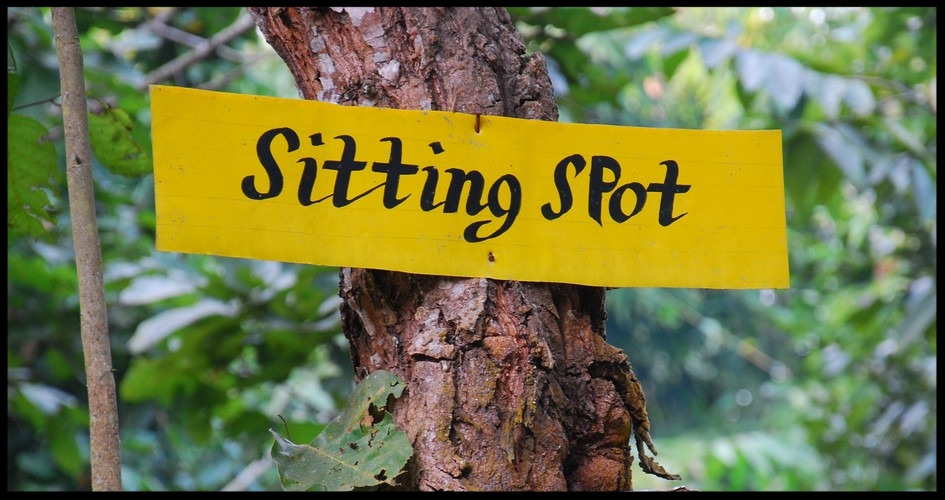 *The spots for standing, squatting, handstands, and cartwheels are in a different village.