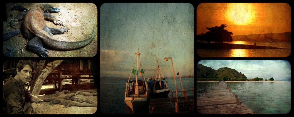 collagex.jpg