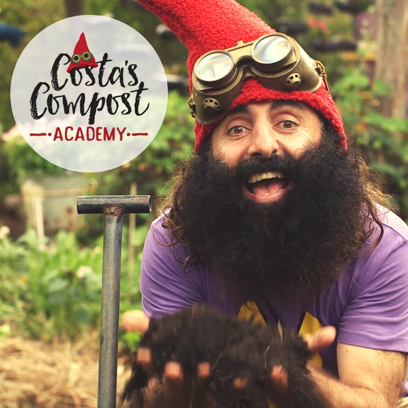 Copy of Facebook post_Costa's BINtensive compost course online holiday fun families gardening free course_.jpg