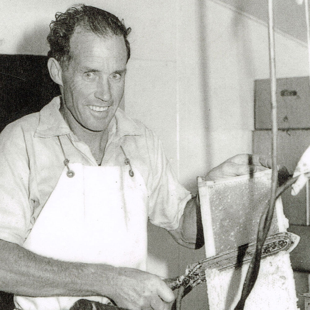 Trevor Rowe – uncapping a frame of honey ready for extracting.