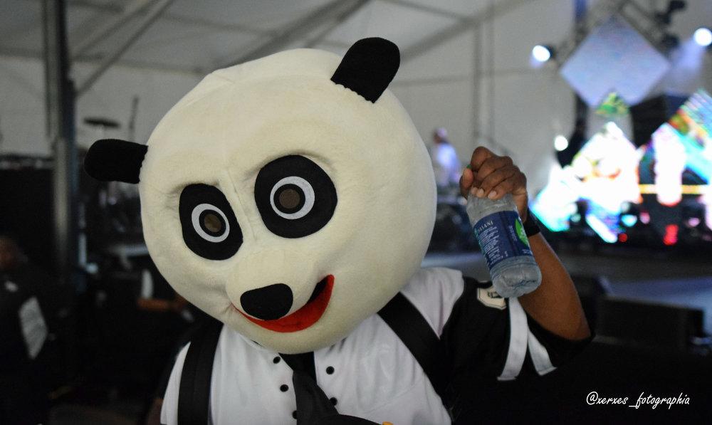 Midnite Panda