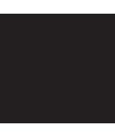 apolis_Logo_168x200.png