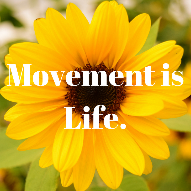 Movement is Life_Prime Chiropractic.jpg