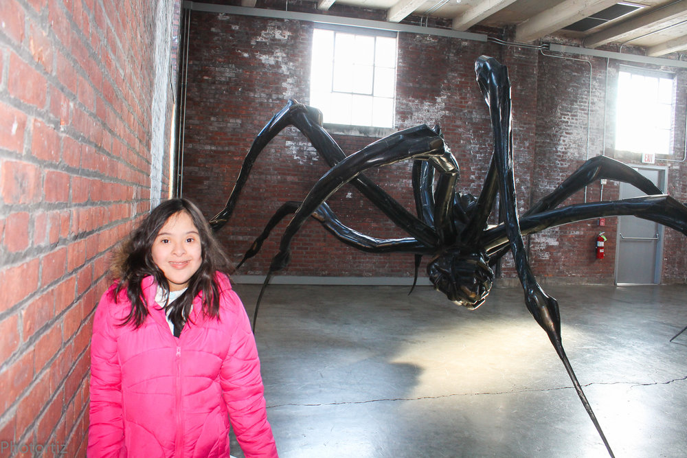Spider from the French artist Louise Bourgeois