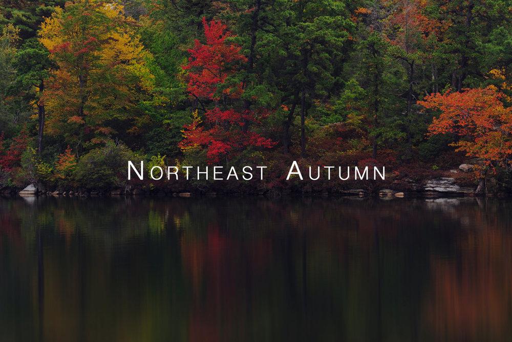 AutumnThumb.jpg