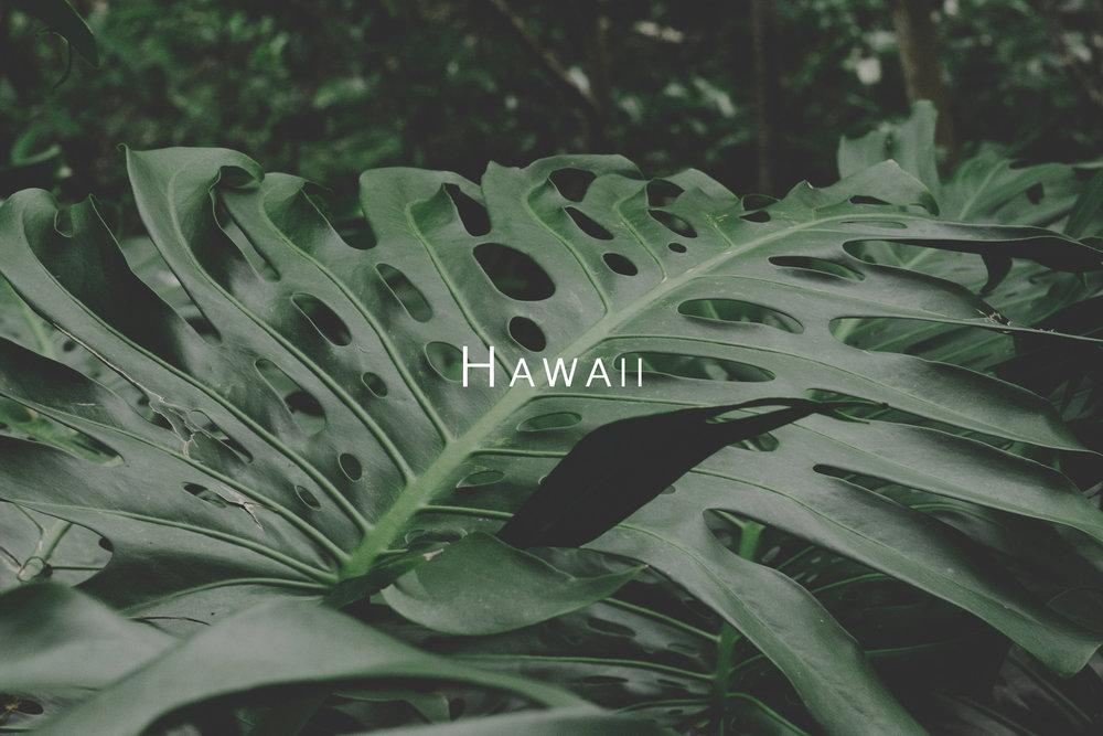 HawaiiThumb.jpg