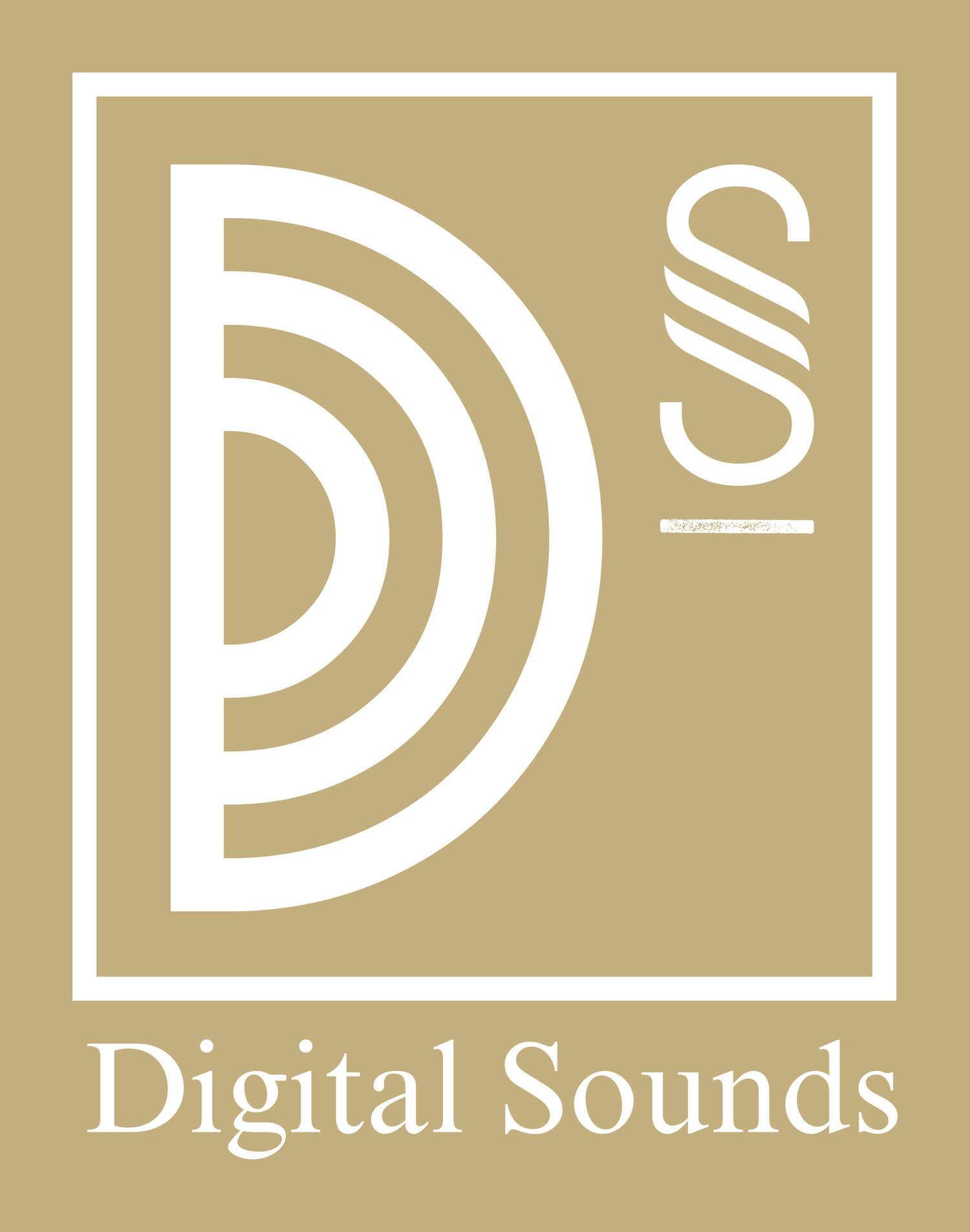 Digital Sounds Entertainment Services