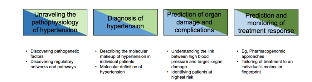 Omics & Hypertension.png
