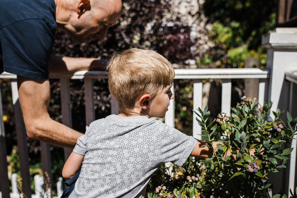 five year old boy gardening with his dad on the back porch {San Francisco in-home lifestyle Family Photographer}