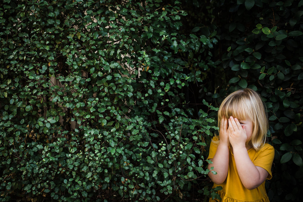 three year old little girl in a yellow dress hiding in bushes while playing hide and seek with her family {East Bay in-home lifestyle Photographer}