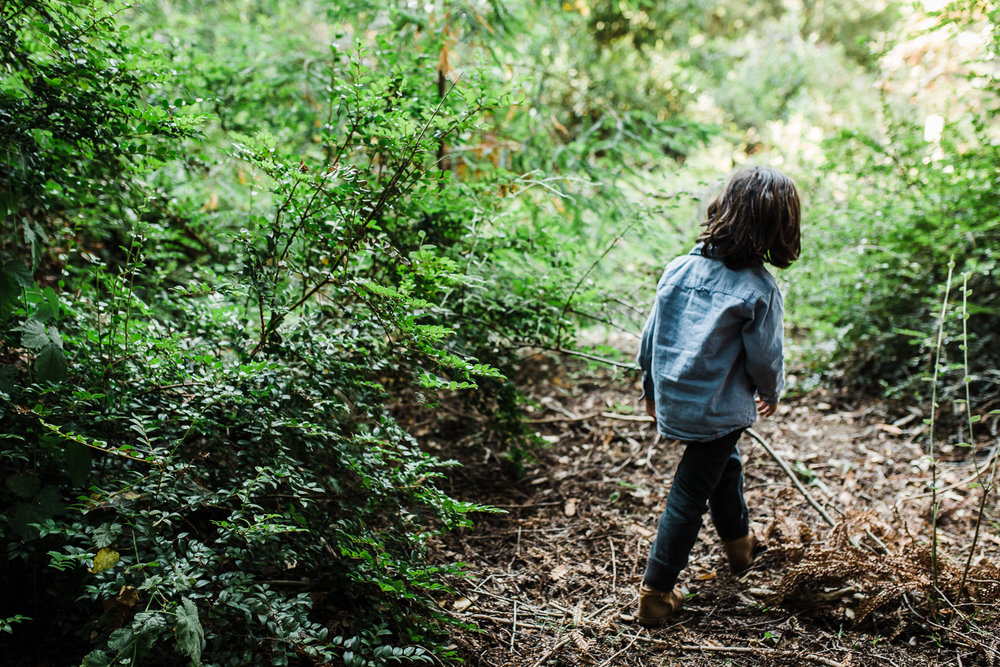 back of a four year old boy walking through the woods {Oakland Family Photographer}