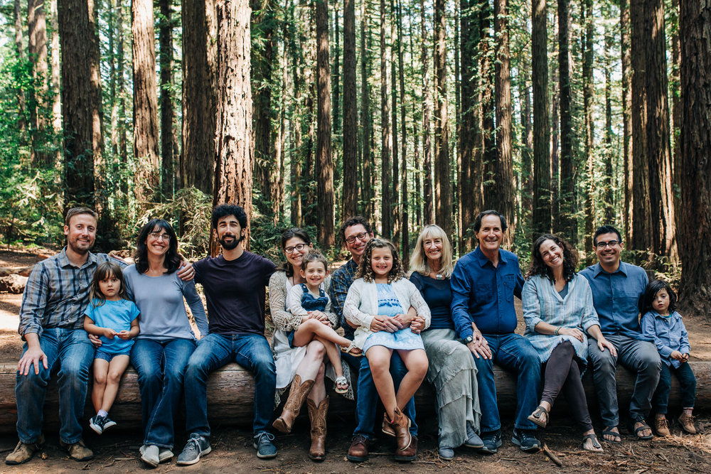 Extended family portrait shot of everyone sitting on a log bench and looking at the camera {Oakland Lifestyle Photographer}