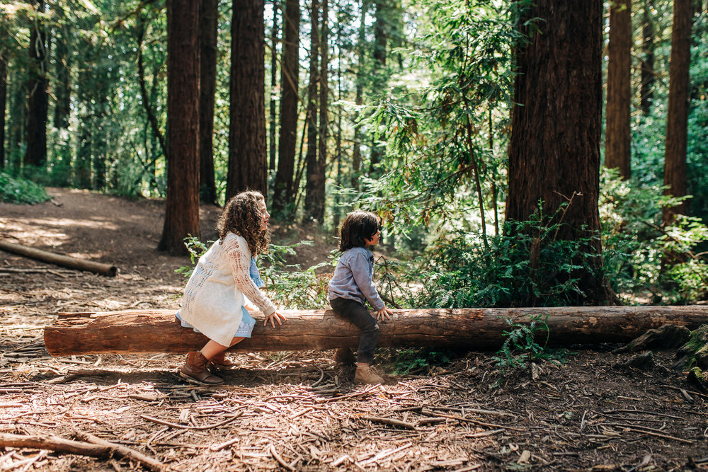 Two kids sitting on a natural log see-saw and playing {Oakland Family Photographer}