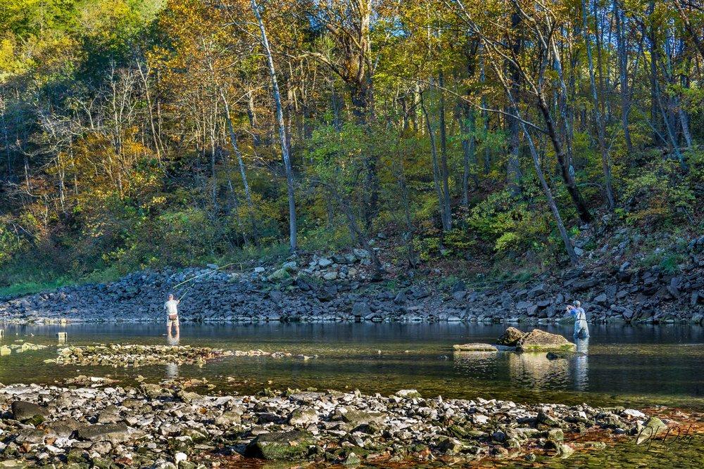 Beaver Dam Tail-water on the White River, Arkansas