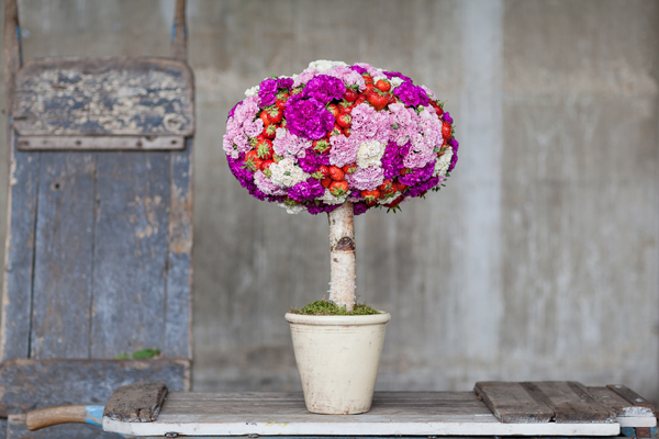 British Flowers Week - tree of garden pinks and strawberreis