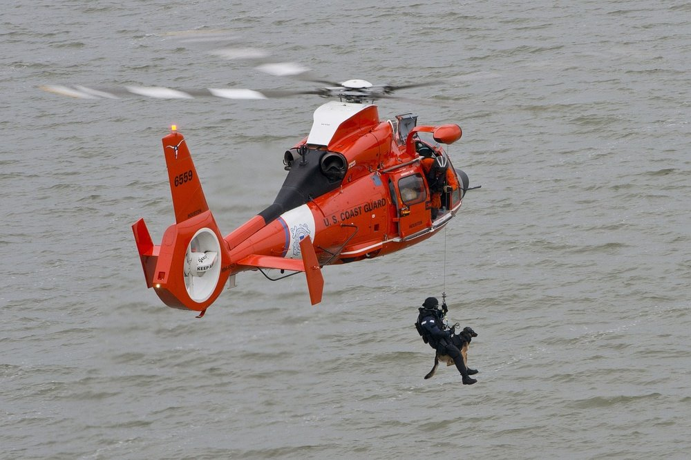 Elliott seems to mean bravely and rightly, which definitely applies to this coast guard rescuing a dog.