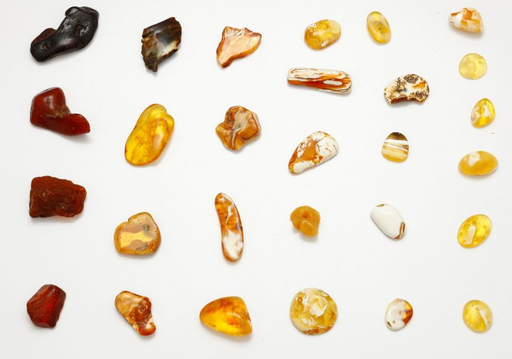 Some different colours of Baltic amber.