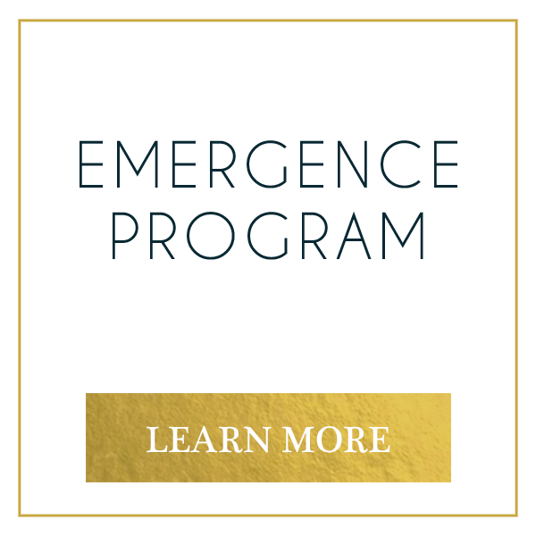emergence program button.png