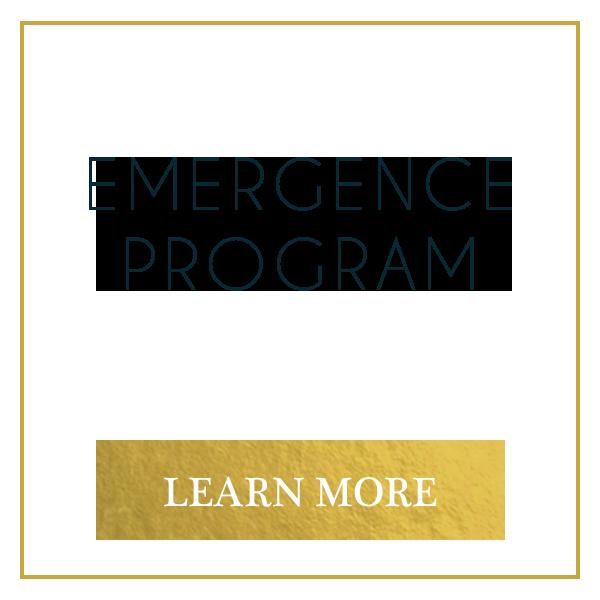 emergence program button.png