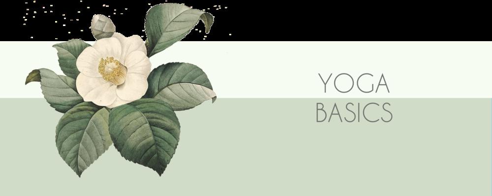yoga basics banner.png