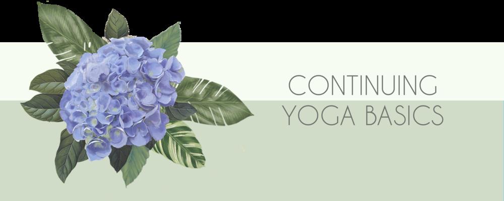 continuing yoga basics banner.png