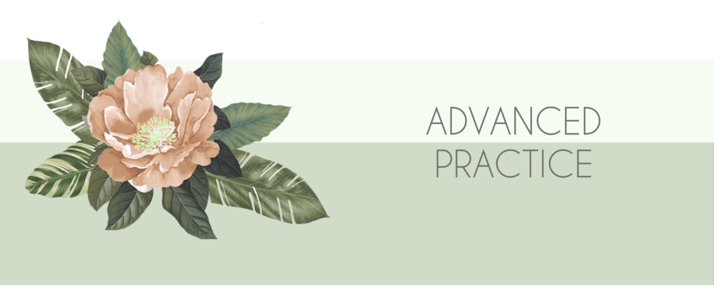 advanced practice banner.png