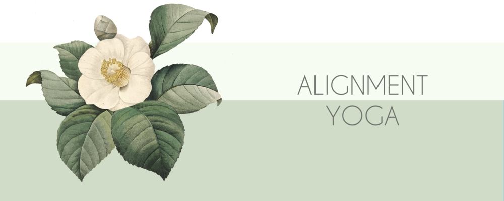 ALIGNMENT YOGA BANNER.png