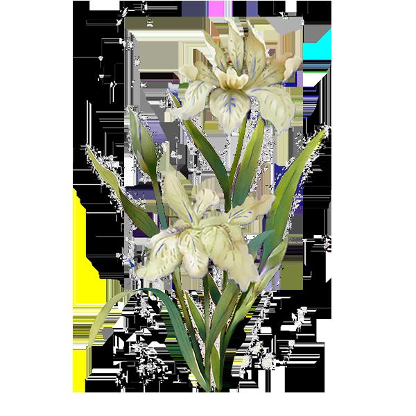 menu white flower.png