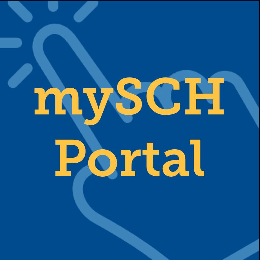 Portal Widget.png