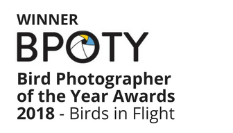 Bird Photographerof the Year Awards (2).png