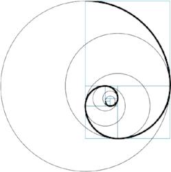 Fibonacci-.jpg