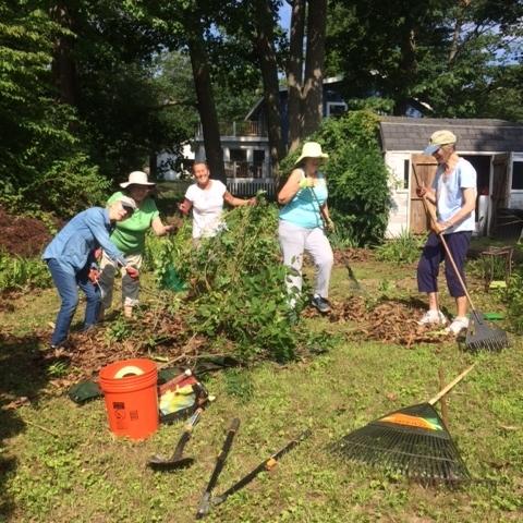 Cumberland yard work.JPG