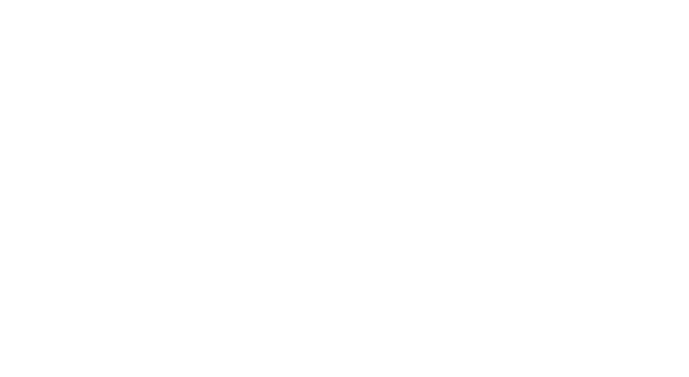 Bahamas International Film Festival.png