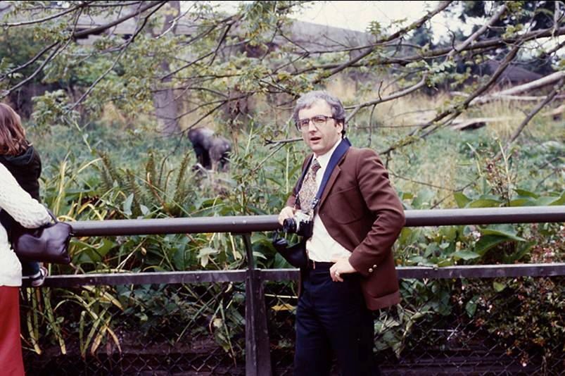 woodland-park-gorilla.jpg