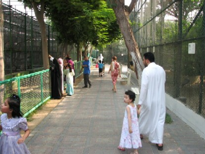 Typical Path at Dubai Zoo