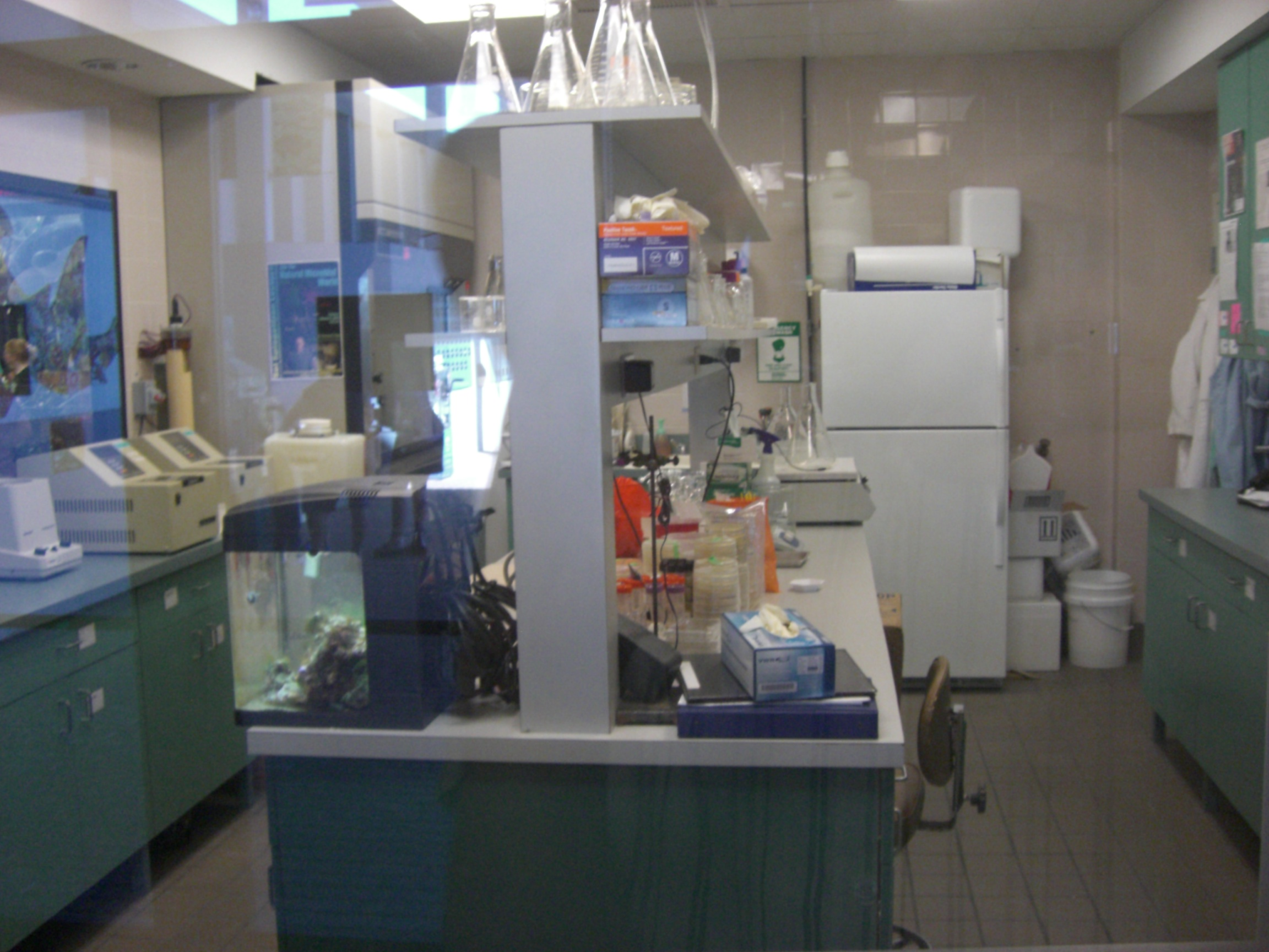 'Behind the Scenes at the Lab' Exhibit