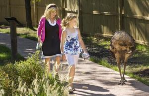 Peoria Zoo Walk-About by David Zalaznik_Journal Star