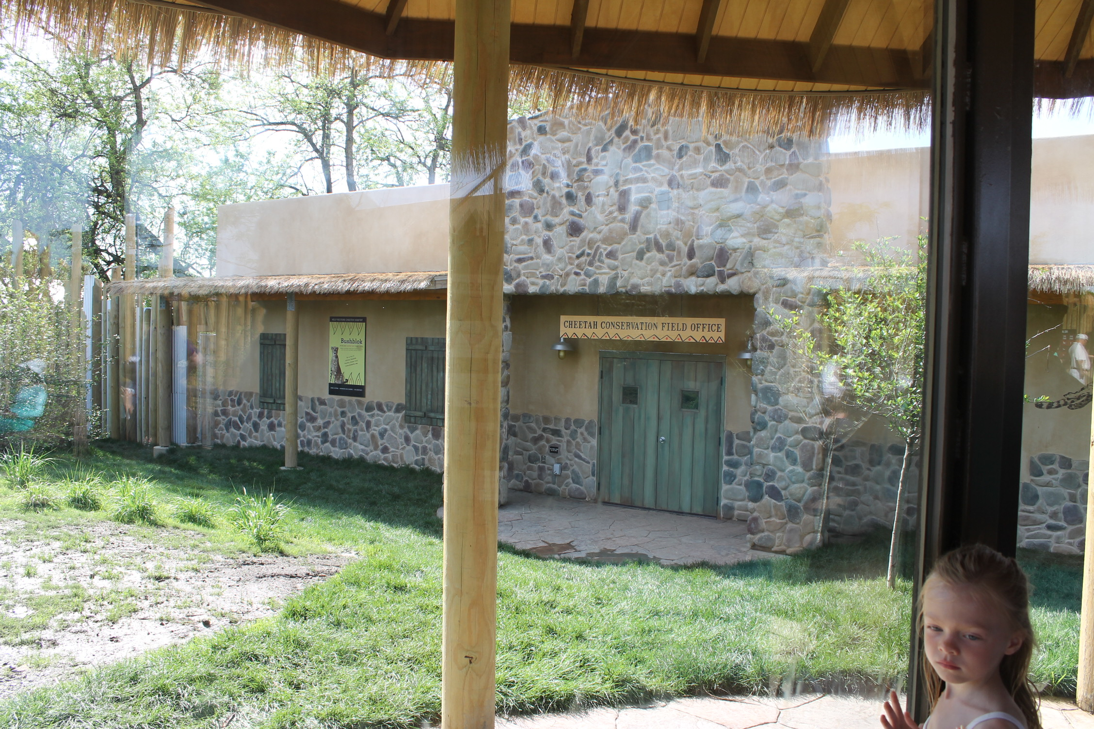 The cheetahs permanent home; Themed to Cheetah Conservation Fun headquarters.