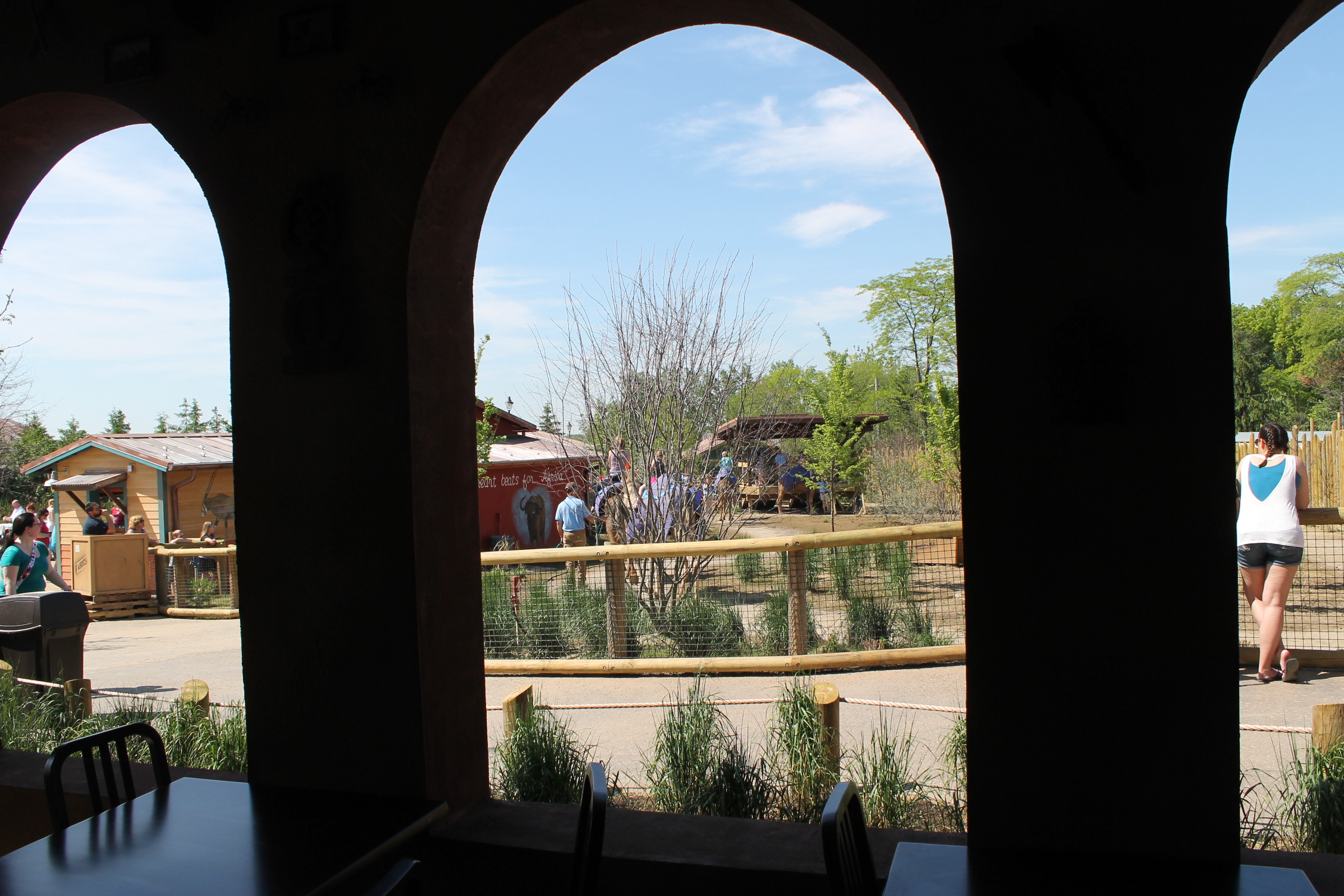 View from the other seating area into the camel ride yard.