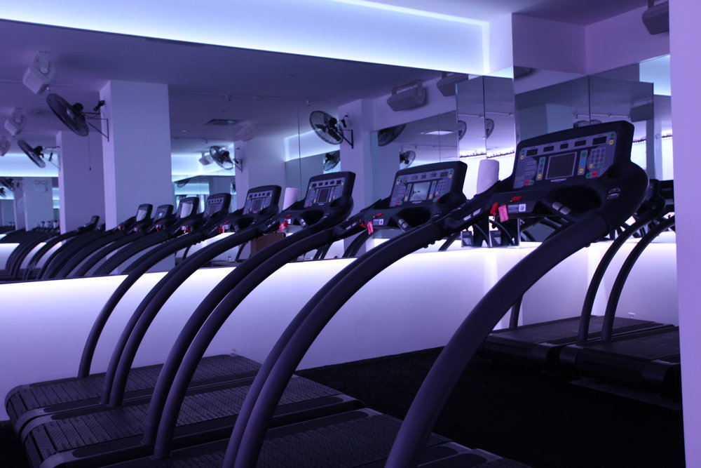 Dim purple lighting in the studio of the Mile High Run Club with multiple treadmills arranged side by side. MEP provided by 2LS Consulting Engineering.