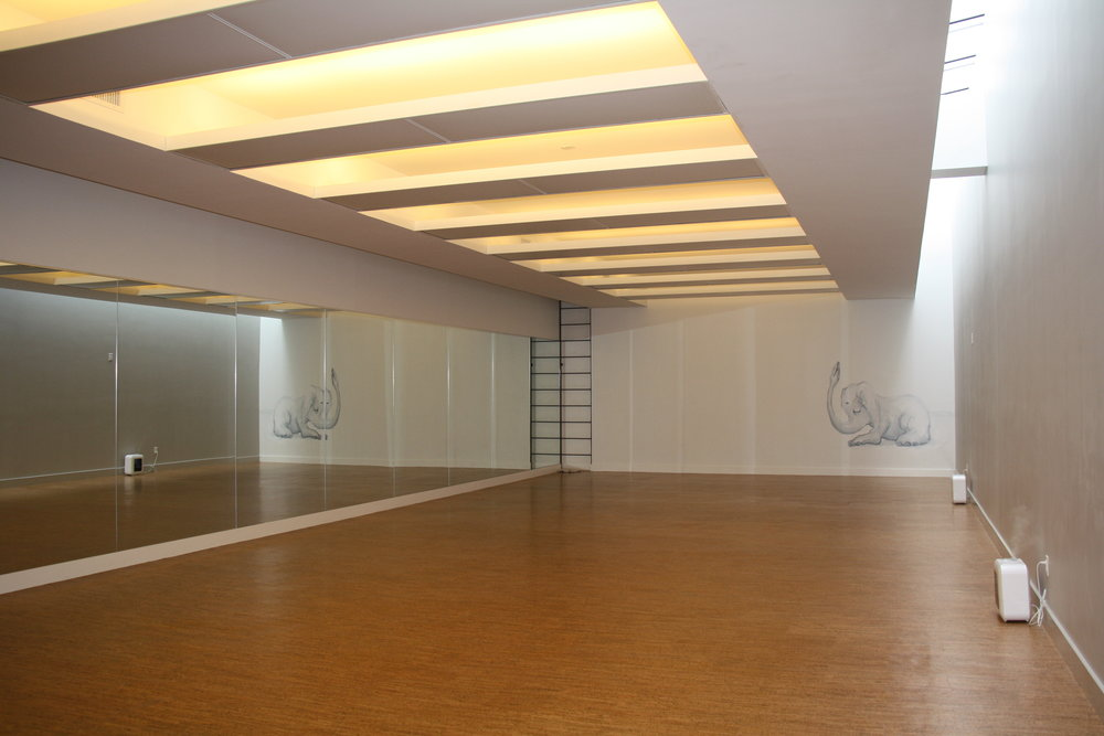 Yoga studio with portable humidifiers, large mirrors, and a mural of an elephant doing yoga at Modo Yoga, Brooklyn, New York. MEP designed by 2LS Consulting Engineering.