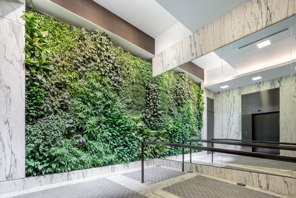 A luxury residential building's lobby area with a large living green wall beside the elevators. MEP by 2LS Consulting Engineering.